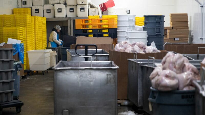 U.S. pledges $500 mln to increase meat processing capacity